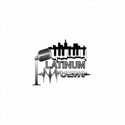 Platinum Muzik Entertainment LLC