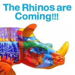 The Rhinos Are Coming
