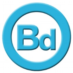 Brandon David Entertainment Group LLC