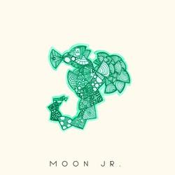 Moon Jr.