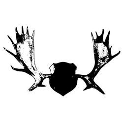 Follow the Moose