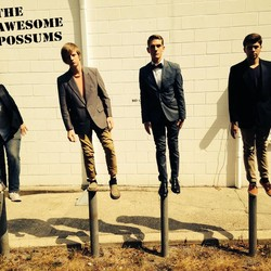 The Awesome Possums