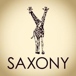 Saxony Band
